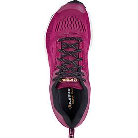 Icebug W's DTS5 RB9X Shoes Hibiscus/Black